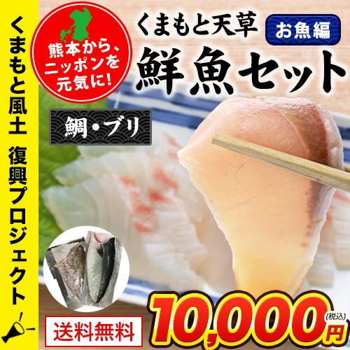 くまもと天草鮮魚セット