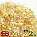 低アミロース米 ぴかまる 2kg