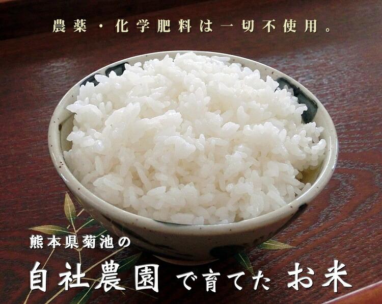 熊本県菊池の自社農園で育てたお米