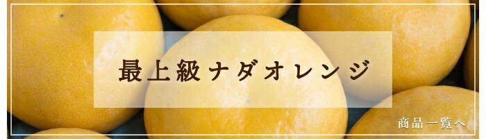 最上級ナダオレンジ