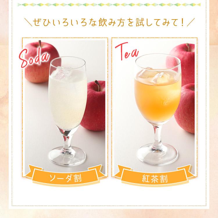 300ml 選べる 果実のリキュール 飲み比べ リキュール 酒 果実酒