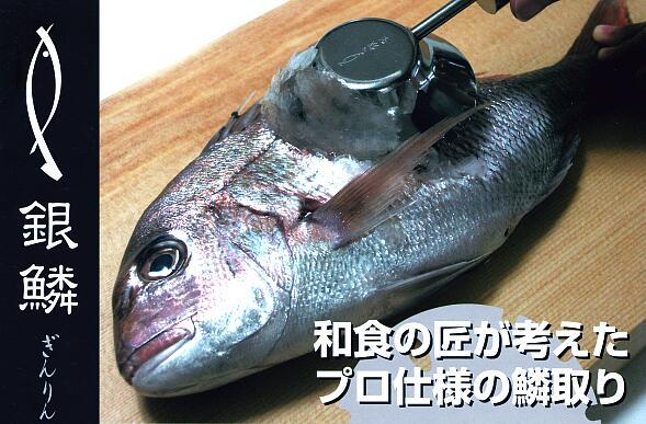 取り 魚 ウロコ