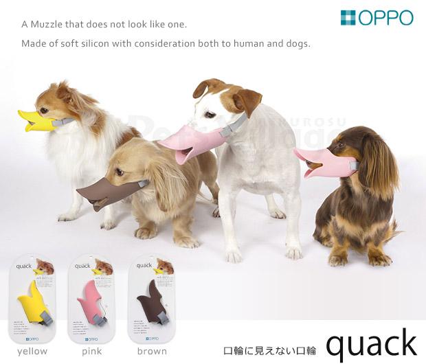 OPPO(オッポ) クァック(quack)