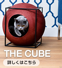 THE CUBE はこちら