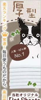 人気No.1ペットシーツ「オリジナル厚型ペットシーツ」
