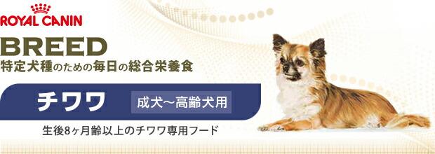 ロイヤルカナン(ROYAL CANIN) CHN-WET 8歳以上の高齢犬用