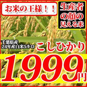 千葉県産コシヒカリ5キロ