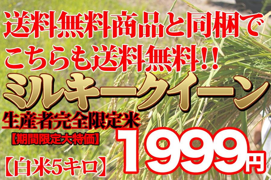 生産者限定ミルキークイーン千葉県産5キロ1999円