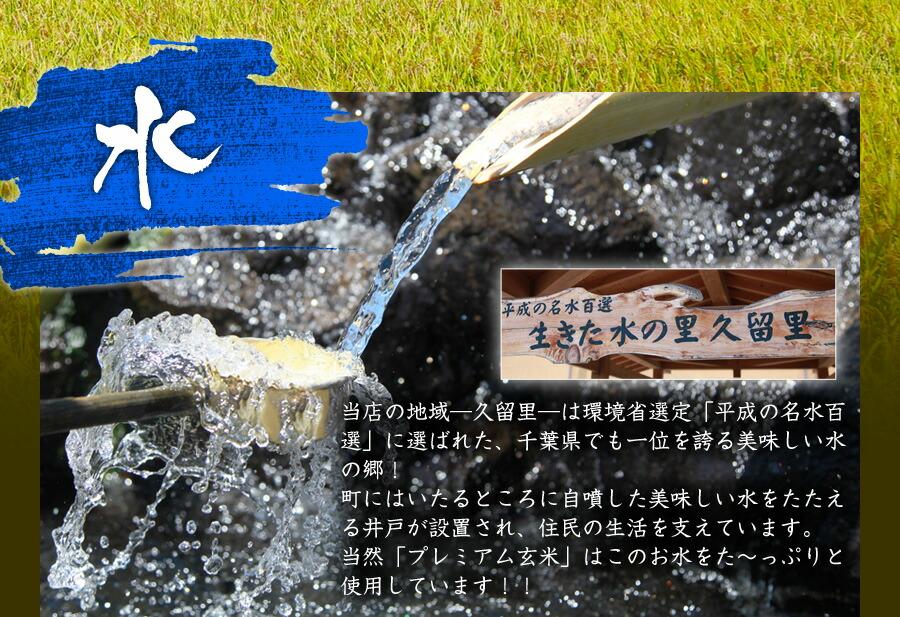 コシヒカリ入荷玄米30キロ