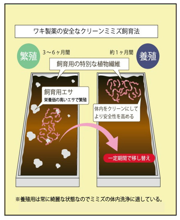 ワキ製薬の安全なクリーンミミズ飼育法
