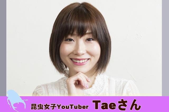 歌うクワカブ女子 Taeさん