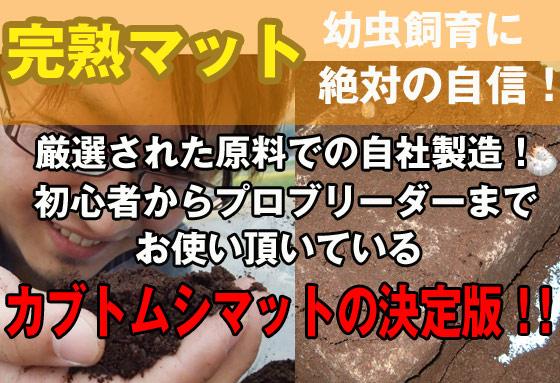 完熟マット カブトムシ幼虫飼育に絶対の自信!幼虫のエサ マット 土 です。初心者からプロブリーダーまでお使い頂いているカブトマット ビートルマットの決定版!