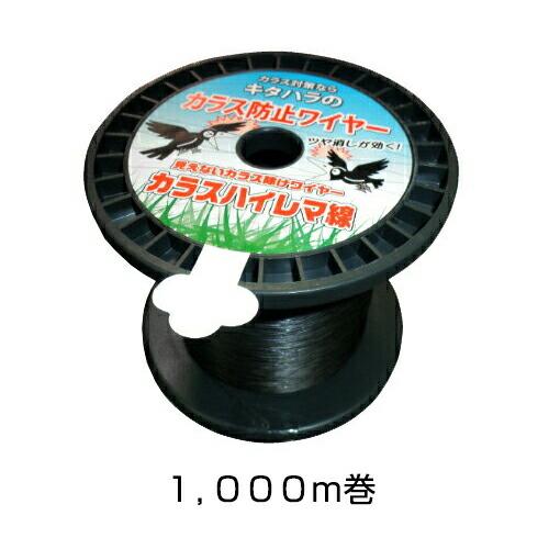 1,000m巻