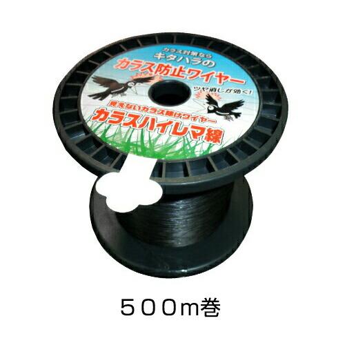 500m巻