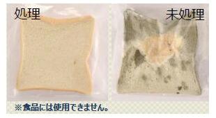 食パンを利用した実験