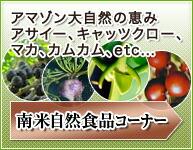 南米自然食品コーナー