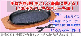 鉄板【サイズ: 23.5cm×13.5cm】(IH対応) イシガキプログレード小判ステーキ皿