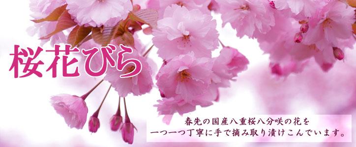 国産八重桜の花びらのみを丁寧に塩漬けしました。
