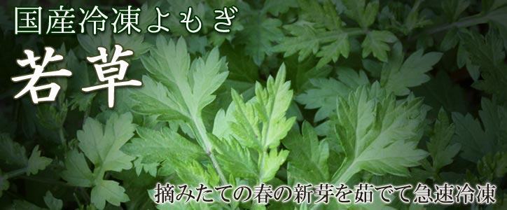 国産冷凍よもぎ若草 摘みたての春の新芽を茹でて急速冷凍