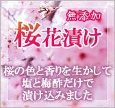 色鮮やかで香り豊かな無添加の桜花漬け