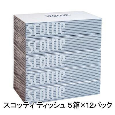 送料無料 スコッティ ティッシュペーパー 200組 5箱×12パック ティッシュ ケース まとめ買い 00115