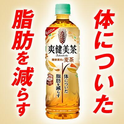 ●代引き不可 送料無料 爽健美茶 健康素材の麦茶 600ml PET×48本(24本×2ケース) 46643
