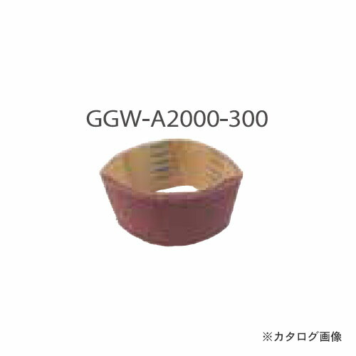 ggw-a2000-300