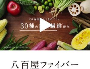 タマチャンショップのYoutube動画(八百屋ファイバー)