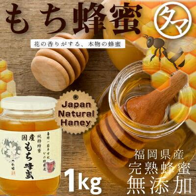 【九州 蜂蜜】国産もち蜂蜜(はちみつ) 1KG 赤い実をつける黒金糯(くろがねもち)の花から採れるハチミツ。酸味があり、さわやかな後味があります。山の草木を思わせる風味です。まろやかなコクを持った奥深い蜂蜜です。 【無添加】【かの蜂蜜】【国産 ハチミツ】