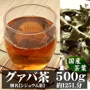 国産グァバ茶( シジュウム茶 )宮崎産 500g入り(約50日分) ~自然の香りをそのままに~ 【完全無添加・無着色・国産茶葉】 (グァバ シジュウム)