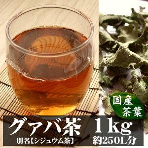 グァバ茶(シジュウム茶)宮崎産 1kg入り(約100日分) ~自然の香りをそのままに~ 【完全無添加・無着色・国産茶葉】 (グァバ シジュウム)