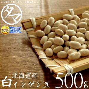 北海道産 白いんげん豆 500g (30年度産) 楽天市場特別価格で「白いんげん豆」販売中! ホックホクで絶妙の食感で甘さのある美味しさです。 【大手亡豆】【白いんげん豆の栄養】【国産 大手亡豆】
