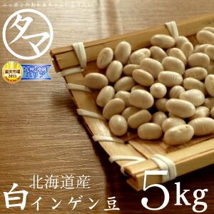 【送料無料】北海道産 白いんげん豆 5kg (30年度産) 楽天市場特別価格で「白いんげん豆」販売中! ホックホクで絶妙の食感で甘さのある美味しさです。 【大手亡豆】【白いんげん豆の栄養】【国産 大手亡豆】