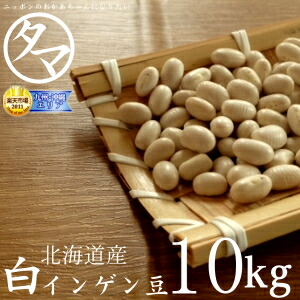 【送料無料】北海道産 白いんげん豆 10kg (30年度産) 楽天市場特別価格で「白いんげん豆」販売中! ホックホクで絶妙の食感で甘さのある美味しさです。 【大手亡豆】【白いんげん豆の栄養】【国産 大手亡豆】