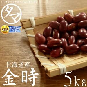 【送料無料】北海道産 金時豆 5kg (30年度産) ヤマダモール特別価格で「金時豆」販売中! ホックホクで絶妙の食感で甘さのある美味しさです。 【生金時】【金時の栄養】【国産 金時豆】
