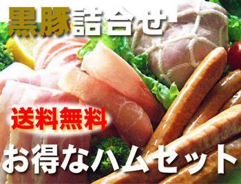 【厳選グルメ~送料0円~】霧島黒豚ハム お得な詰め合わせセット