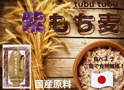 超レア食材!【送料無料】超希少な紫もち麦1kg(九州産/30年度産) 紫が濃い状態で収穫したもち麦です。 もち麦に比べてポリフェノールの1種、アントシアニジンを多く含み、もち麦自体の水分量が多く、より一層もちもちぷちぷちの食感が楽しめます 【国産もち麦/無添加】