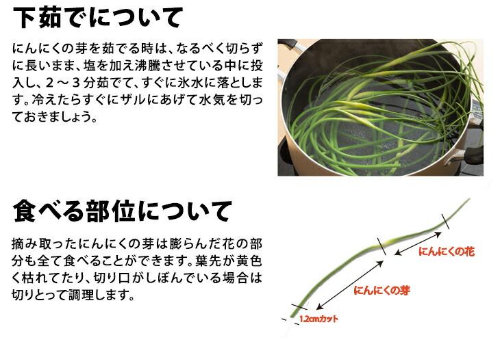 にんにくの芽 500g