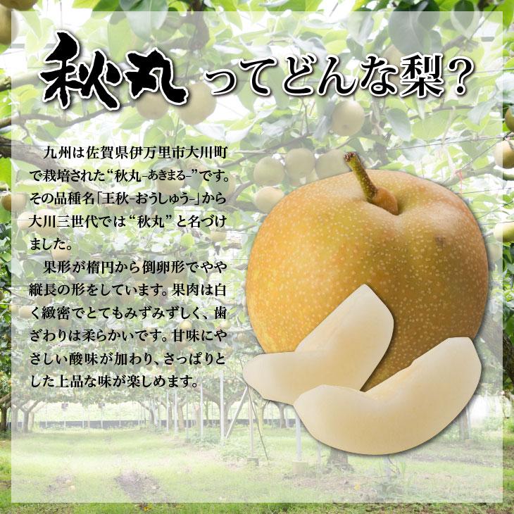 大川三世代秋丸2.3kg