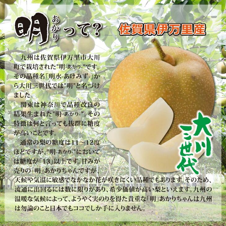大川三世代明(あかり)5kg
