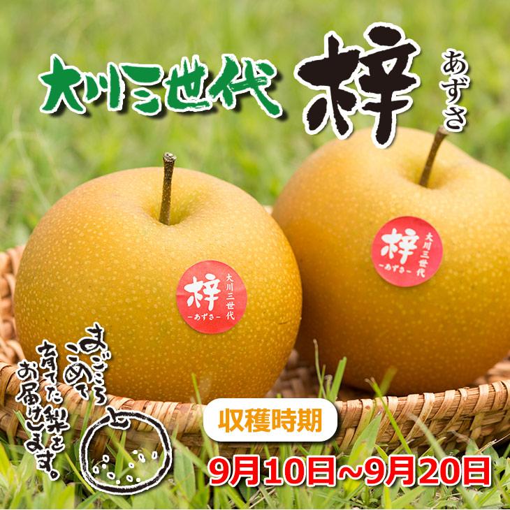大川三世代梓3kg