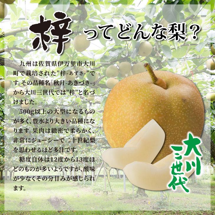 大川三世代梓2.3kg