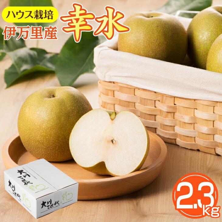 大川三世代温室幸太郎2.3kg