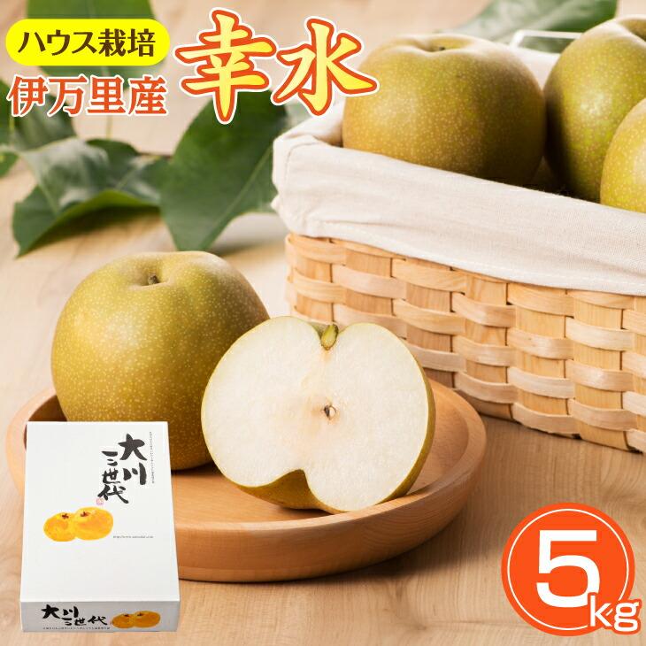大川三世代温室幸太郎5kg