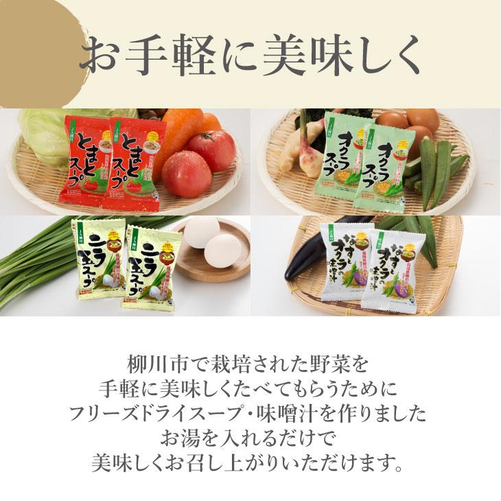 おいしい野菜たっぷりスープ・味噌汁18個セット