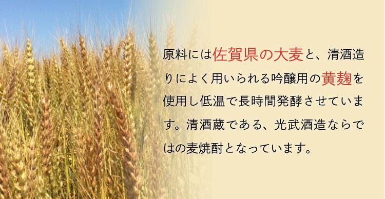 麦焼酎「舞ここちブルーボトル」720ml