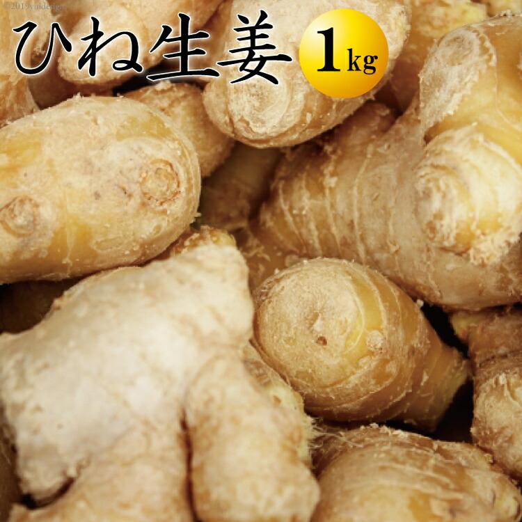 囲い生姜 1キロ