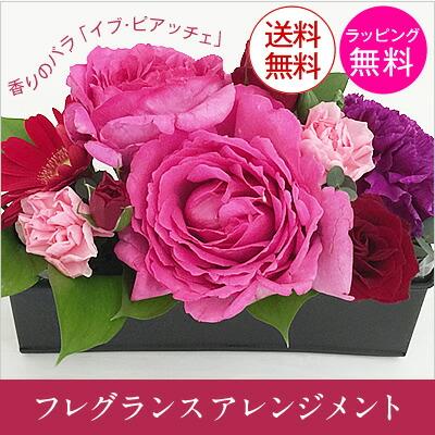 甘い香りのバラ「イヴ・ピアッチェ」