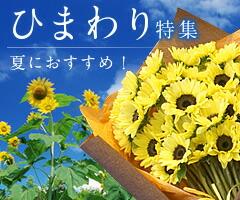夏限定!ひまわり花贈り