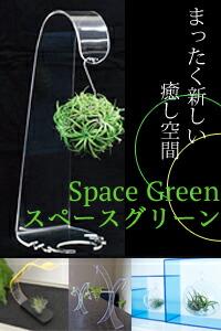 インテリア スペースグリーン